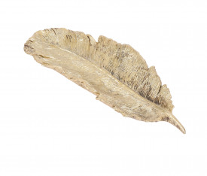 Platou auriu, forma frunza