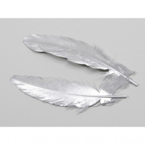 Set 12 pene argintii, 16-18 cm