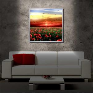 Tablou iluminat LED cu rama metalica Poppies (60 x 60 cm)