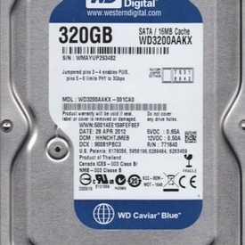 Hard disk 3.5 WD Blue 320GB, 7200rpm, 16MB, SATA 3 WD3200AAKX