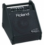 Roland Roland PM-10 Personal Monitor Amplifier