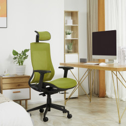 Vinsetto Cadeira de Escritório Giratória Ergonômica com Altura Ajustável Apoio para os Braços Apoio para a Cabeça e Encosto Alto de Malha 66,5x66x120-128cm Verde
