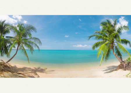 Fototapet Mare, Fototapete cu vedere la plajă și palmieri.
