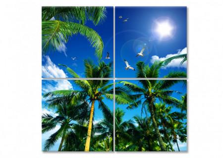 Multicanvas, Palmieri pe fundalul cerului.