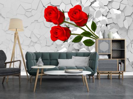 Fototapet 3D, Un trandafir roșu pe un fundal alb 3D