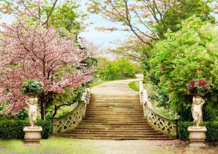 Fototapet Fresco, Fototapete cu o vedere la scările din parc