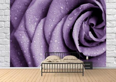 Fototapet, Petale de trandafir violet