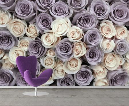 Fototapet, Trandafiri purpurii și albi