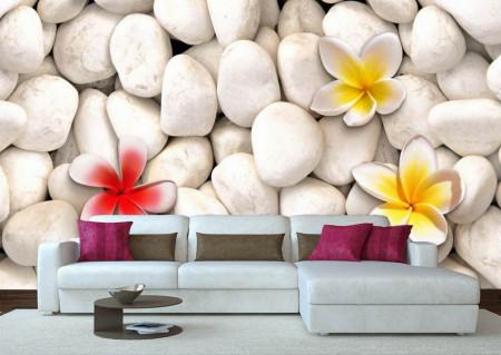 Fototapete, Flori galbene pe pietre albe