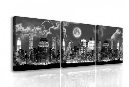 Multicanvas, Orașul alb-negru sub Lună