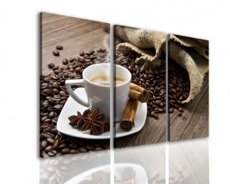 Multicanvas, Raiul de cafea.