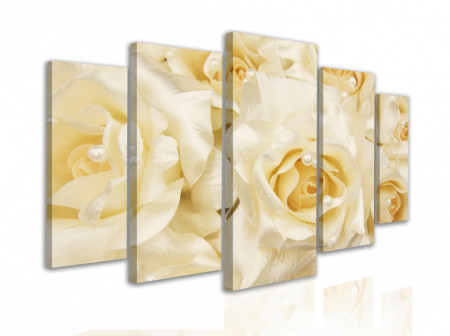 Multicanvas, Trandafirii albi se închid