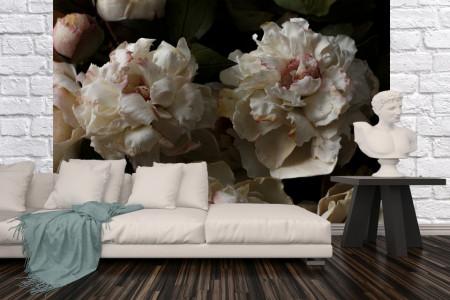 Fototapet, Flori mari albe