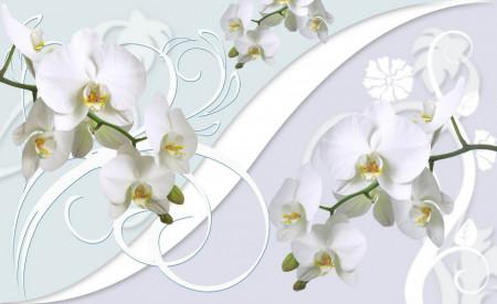 Fototapete 3D, Orhidei albe pe un fundal 3D
