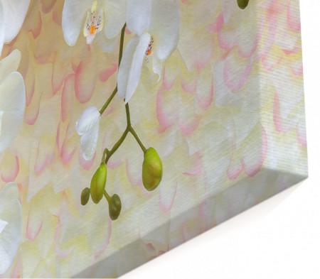 Multicanvas, Orhideele pe un fond bej.