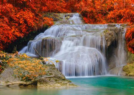 Fototapete, Un mal pe fonul unie cascade înconjurate de tufișuri roșii