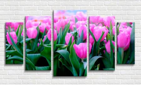 Multicanvas, Primăvară roză
