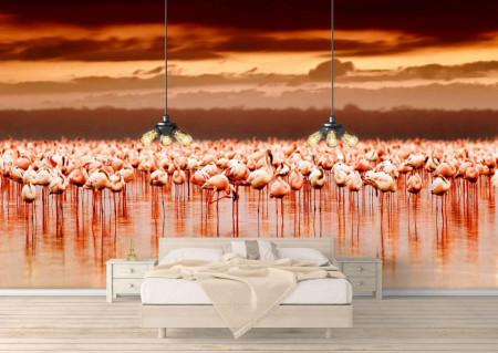 Fototapet, Flamingo roz la apusul soarelui