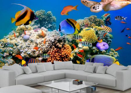 Fototapet, Pești de diferite culori