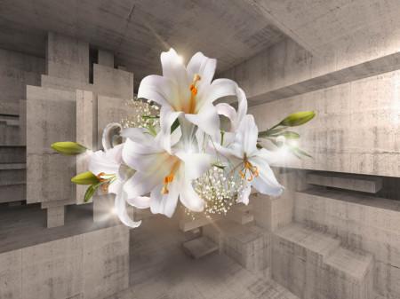 Fototapete 3D, Un crin alb pe fundalul unui tunel din lemn.