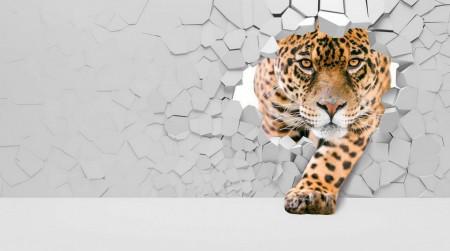 Fototapete 3D, Un leopard pe fundalul unui perete spart