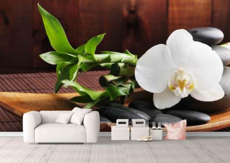 Fototapete, Orhideie albă și pietre negre