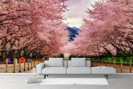 Fototapet, Calea ferată lângă copacii sakura