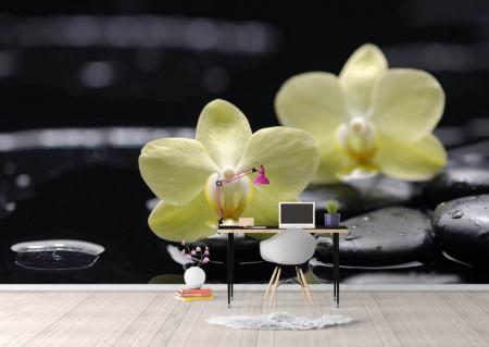 Fototapet, Pietre negre și flori