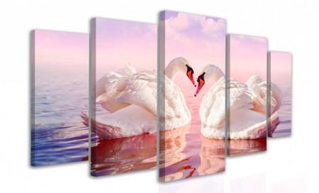 Multicanvas, Lebedele înoată în lac