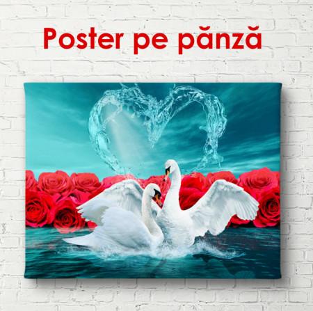 Poster, Dansul lebedelor