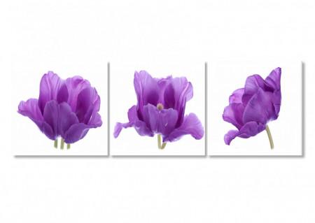 Tablou modular, Trei flori de liliac.