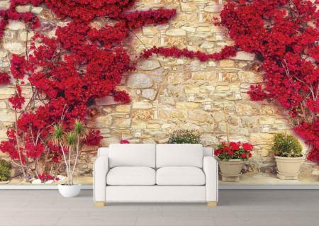 Fototapet, Copaci roșii lângă perete
