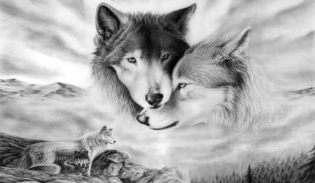 Fototapet, Lupul și lupoaica