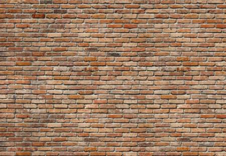 Fototapet Pentru Tavan, Zidul trecutului