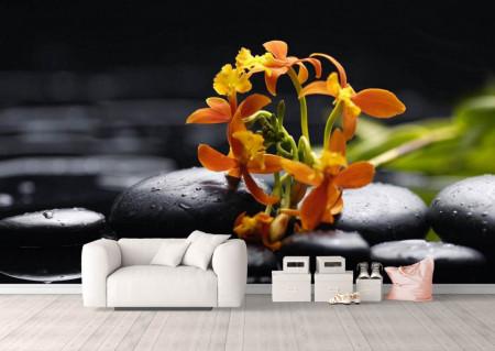 Fototapet, Un buchet de flori pe pietre