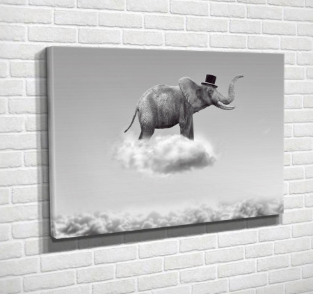 Poster, Elefantul alb-negru în nori