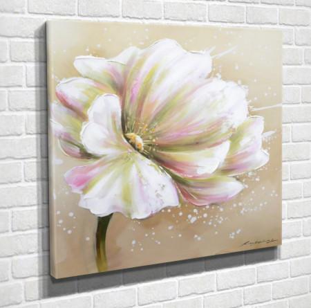 Poster, Floarea albă