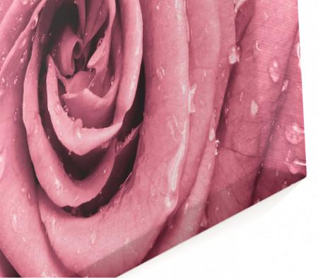 Tablou modular, Trandafirul roz