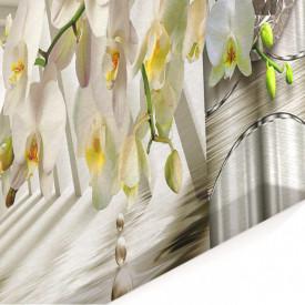 Multicanvas, Orhidea albă pe un fundal 3D.