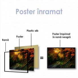 Poster, Apus luminos de toamnă în pădure