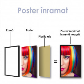 Poster, Fată cu păr curcubeu