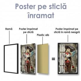 Poster, Fată tâlhar