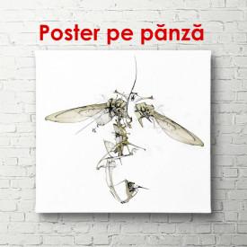 Poster, Insectă abstractă pe un fundal alb