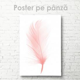 Poster, Pană roz