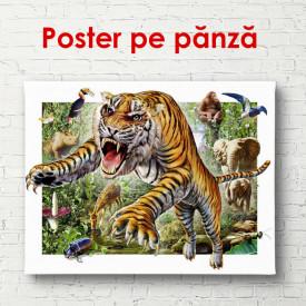 Poster, Tigru înfuriat în fundalul junglei