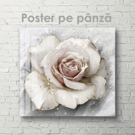 Poster, Trandafir delicat cu margini aurii