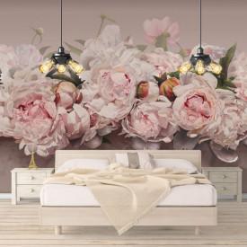 Fototapet, Bujori roz pe un fundal delicat