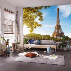 Fototapet Orase, Dimineața frumoasă la Paris