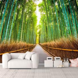 Fototapet, Pădurea de bambus