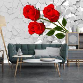 Fototapete 3D, Trandafir roșu pe un fundal alb 3D